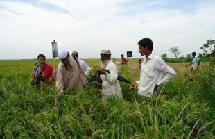 আধুনিক খাদ্য উৎপাদনব্যবস্থা জলবায়ু পরিবর্তনকে তরান্বিত করছে