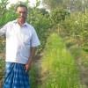 তানোরে কালিজিরা চাষে কৃষকদের আগ্রহ বাড়ছে