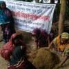 জৈবকৃষি চর্চা করি, নিরাপদ শস্য ঘরে তুলি
