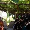 পুষ্টি ও ঔষুধি গুণে ভরা সবজি 'লাউ'