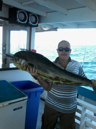 pescaria-em-ilhabela-375x500
