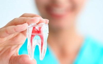 Amil Dental cobre canal sem carência a partir de 34,00/mês por pessoa 5 (1)