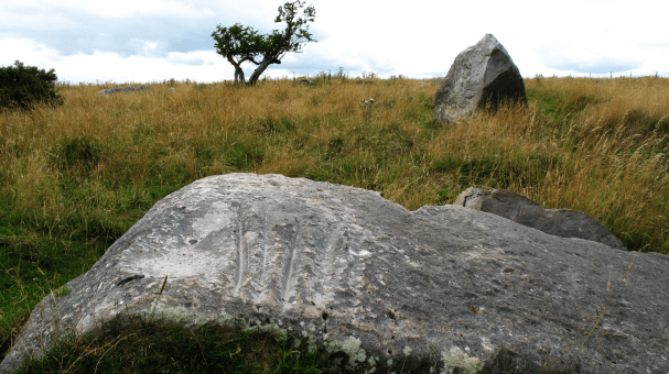 the polissoir or 'Old Nick's Pebble' on Lockeridge Down - the grooves were formed by neolithic man sharpening his stone axes or by Old Nick trying to pluck it from the earth: you decide!