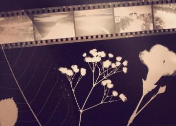 Poesía en Bardulias: Y eso era todo