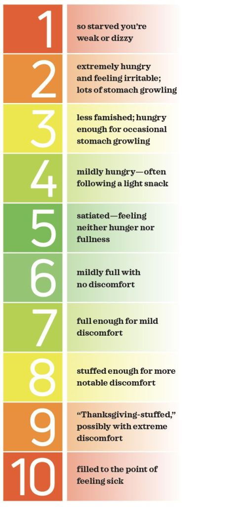 Healthy eating hunger scale