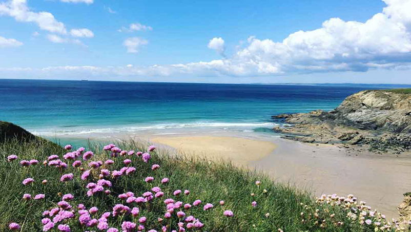 ooking down at nearby church cove beach from the sea thrift on coast path