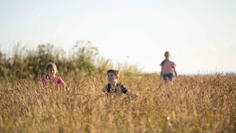 kids running through the long grass in the sea view meadow