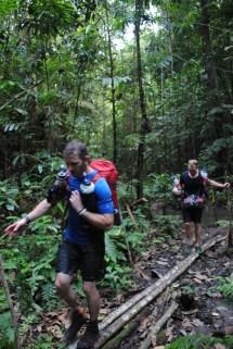 Barefoot Jungle
