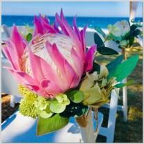 Pink Protea native posies for chair aisle decor. Shelly Beach, Caloundra.