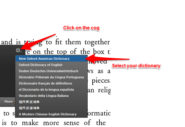 Kindle for PC - This dictionary is not supported in your country