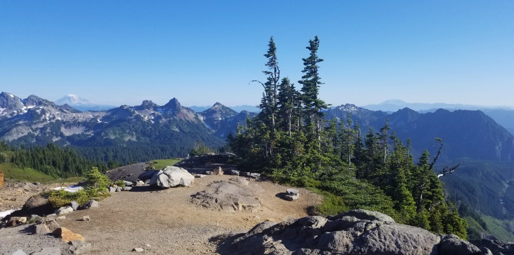View from Paradise Mt. Rainier
