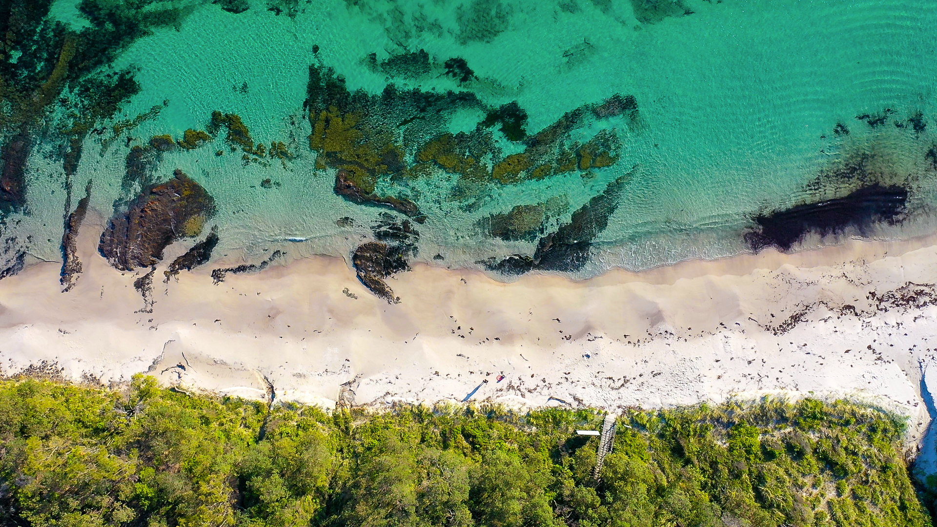Looking down on the pristine waters on Cabbage Tree Beach
