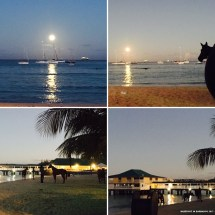 Dancing In Moonlight Barefoot Barbados