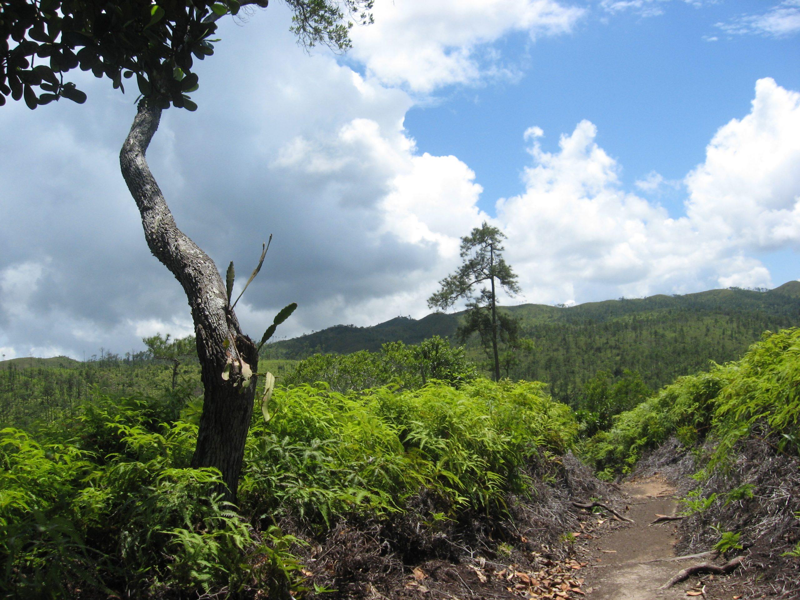 Southern Belize
