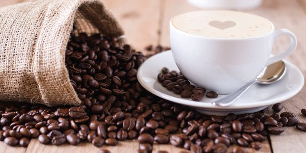 Cappuccino, barei, izobrazevanje