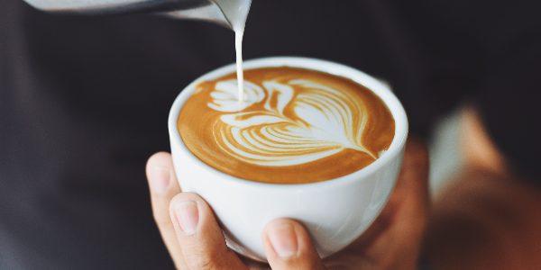 Kava z mlekom, Barei, izobrazevanje