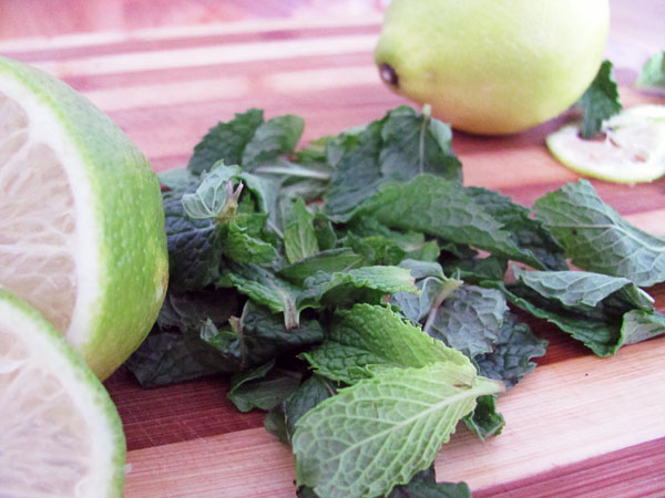 Lemon juice, mint, and a table spoon of brown sugar. grind it ever so lightly and leave till you need it.