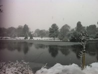 Kelsey Park in the snow