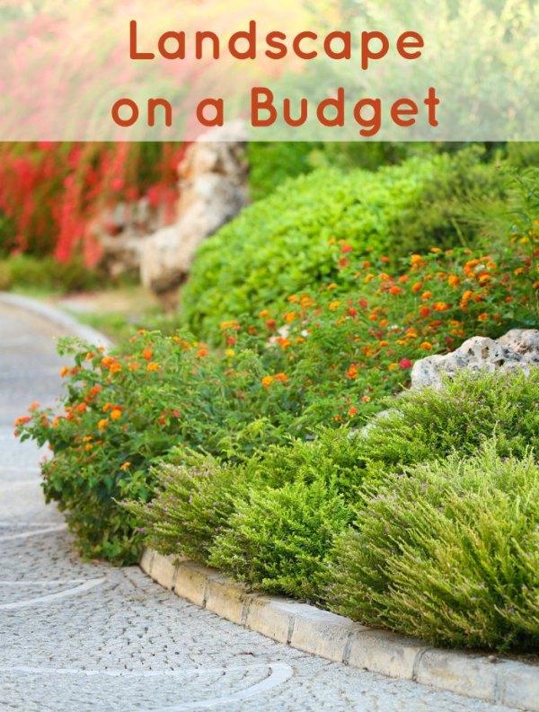 budget landscaping tips - bargainbriana