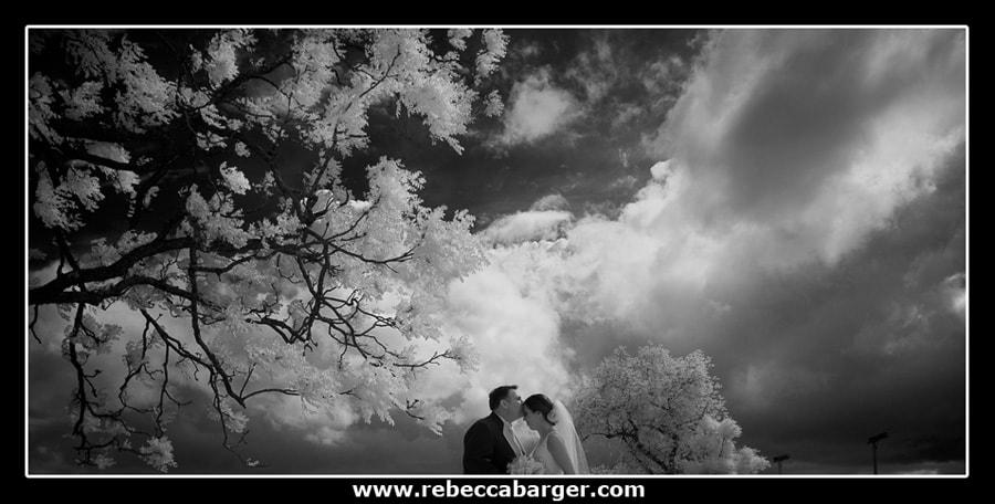 rebeccabarger26