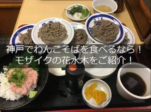 神戸花水木タイトル