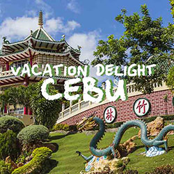 Comfy-Vacation-Cebu