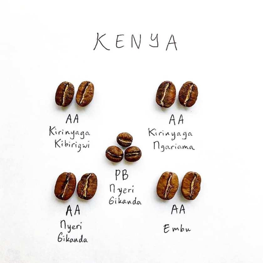 Phân loại cà phê