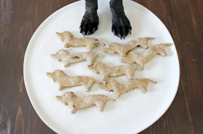 dog biscuits shaped like dachshunds