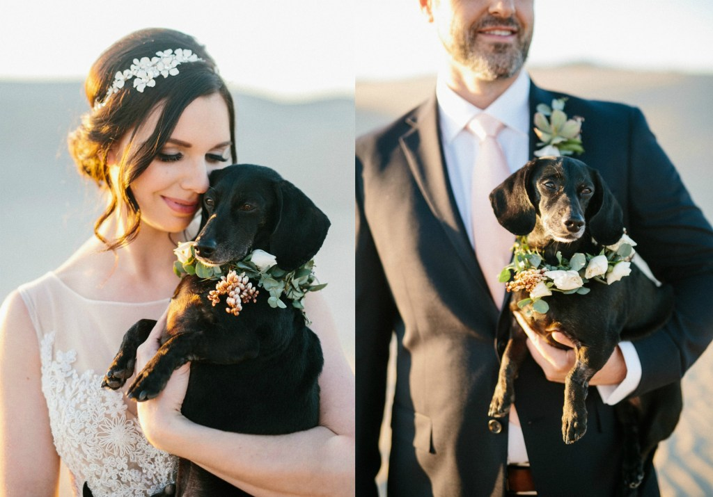 Bride and Groom holding dachshund