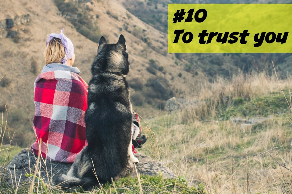 Top 10 Things To Teach Your Dog