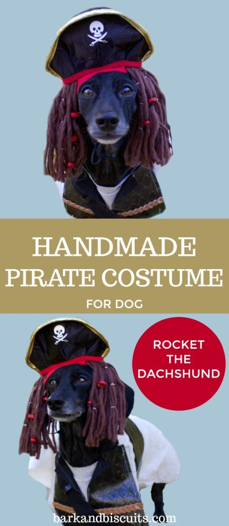 Handmade Pirate Costume for Dogs!