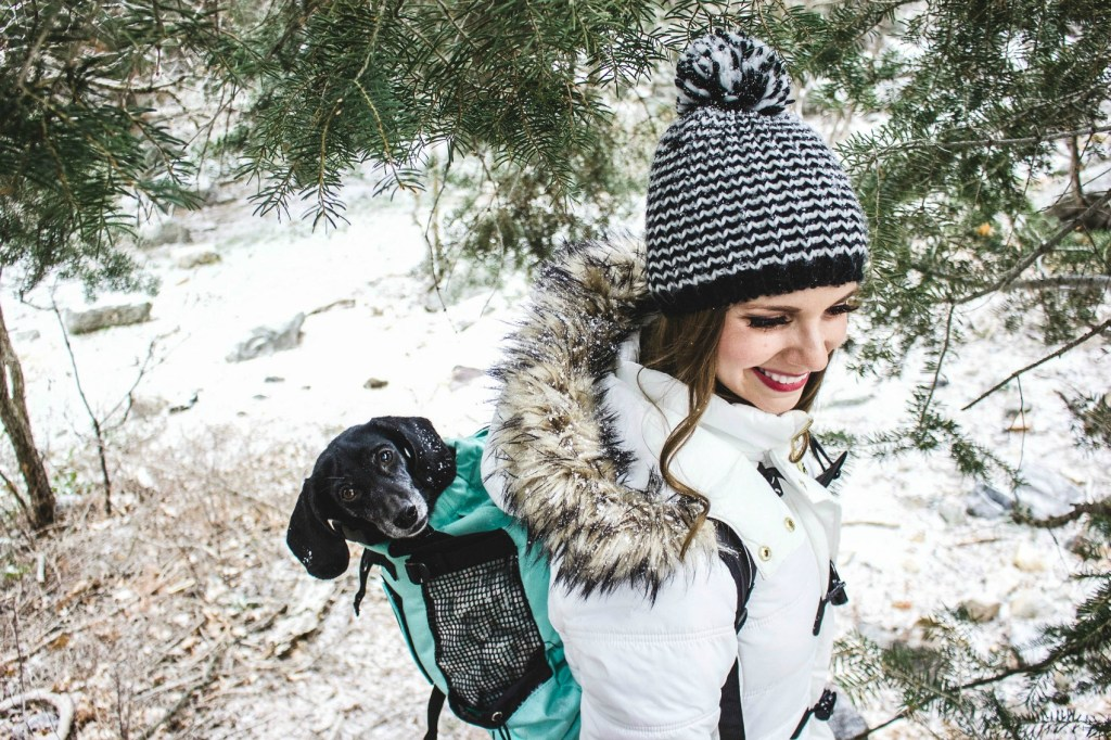 K9 Sport Sack AIR - Travel anywhere with your pet!