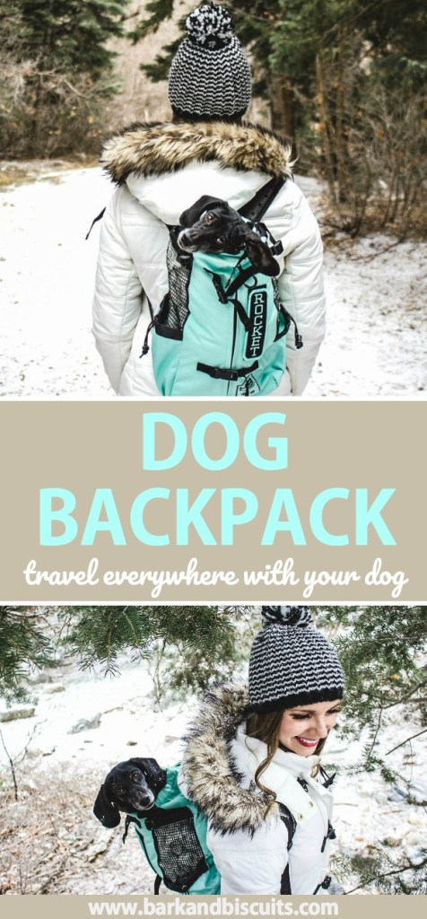 Dog Backpack - Travel everywhere with your dog! #dogbackpack #backpack #dogcarrier #dogholder #travel