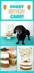 DIY Dog Birthday Cake!