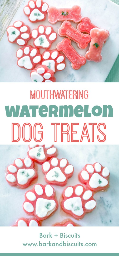 Mouthwatering Watermelon Dog Treats