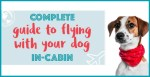 How To Fly With Your Dog In-Cabin