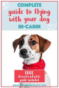 How To Fly With Your Dog In-Cabin. Everything You Need To Know. Includes a FREE Download!