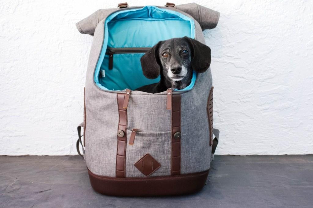 Kurgo Rucksack Dog Carrier Backpack