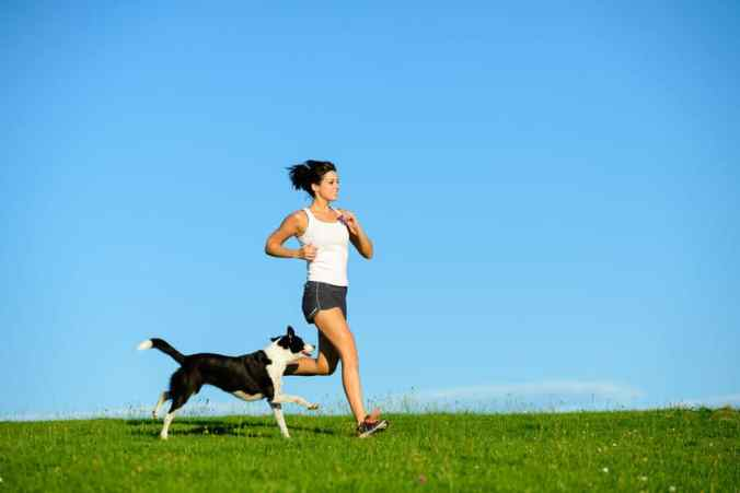 Dog running with his female owner on the grass