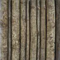 Twig Wall Panels | Tree Branch Wall Art | Bark House
