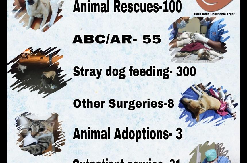 Animal Welfare Activities goes on – January 2021