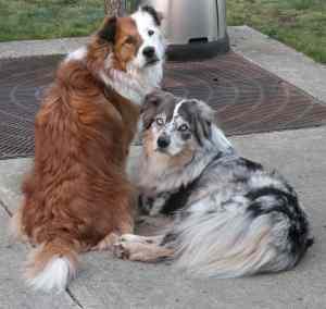 Tess and Ash