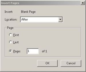 Add a Blank Page