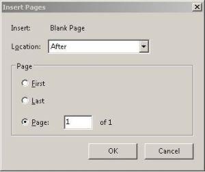 Add a Blank Page