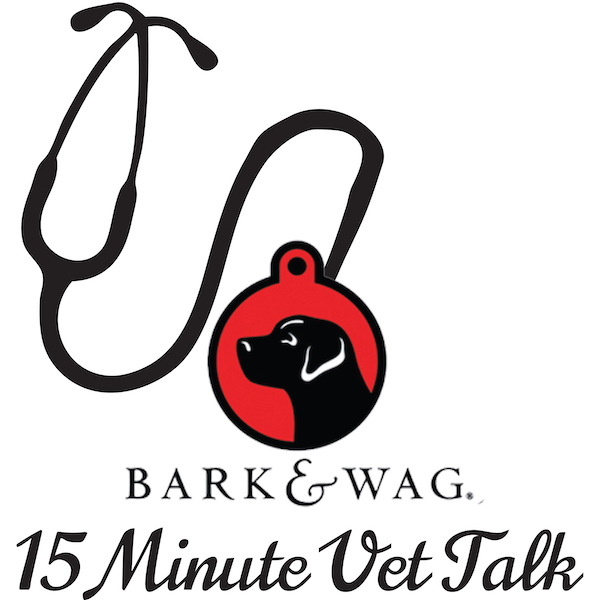 Bark n Wag 15 Minute Vet Talk