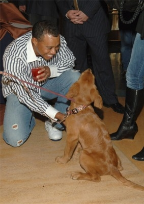 Tiger_Woods_Pets_Dog_Pic_1(1)
