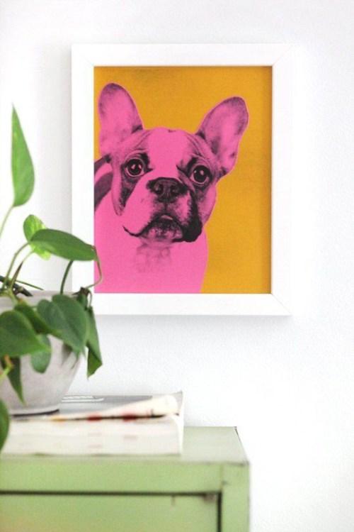 Pet Inspired Decor Colorful Pet Graphic Art Dog Portrait Indoor Plants