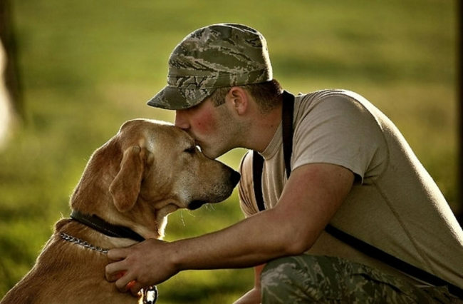 Military man kissing his dog/partner on the forehead.