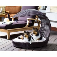 12 Beautiful Dog Beds That Will Instantly Enhance Your ...