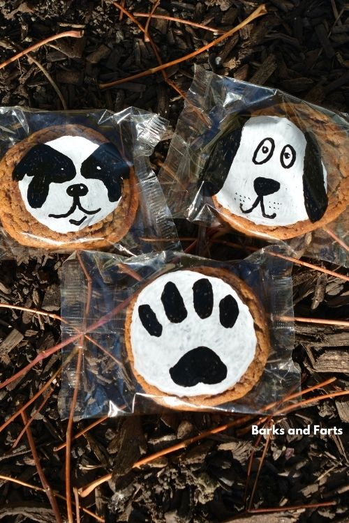 dog cookies decorated with paint set outside to dry.
